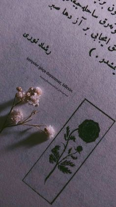 Love Wallpaper, Wallpaper Quotes, Islamic Art, Book Quotes, My Favorite Things, Pictures, Fotografia, Quotes, Wallpaper Of Love
