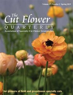 The Cut Flower Quarterly, Spring 2015 The only publication of its kind. Inside this issue: 2015 ASCFG Cut Flowers of the Year, Grower Grant Reports, Ode to the Marigold, and much more!