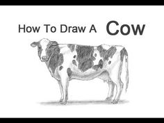 How to Draw a Cow - YouTube