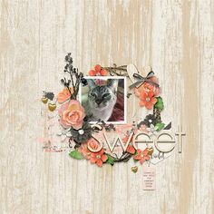 Layout created with Rose Garden by River Rose Designs