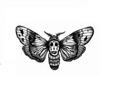 print for sale. Moth Dali