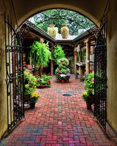Santa Fe Photograph – Into the Courtyard – Fine art travel photography – Southwest Door art – Wall art, Corporate art – wrought iron gate Patio dream. Colorful and bright tile leading to a cute patio area! Outdoor Rooms, Outdoor Gardens, Outdoor Living, Outdoor Sheds, Spanish Style Homes, Spanish House, Mexican Style Homes, Hacienda Style Homes, Spanish Colonial