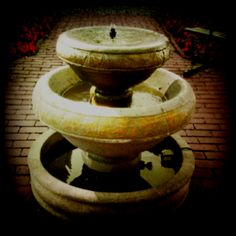 The fountain of youth.