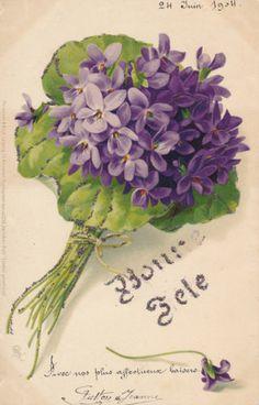 CPA Fleurs Bouquet DE Violettes