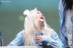 K-Pop Babe Pics – Photos of every single female singer in Korean Pop Music (K-Pop) South Korean Girls, Korean Girl Groups, Somebody To You, Yuehua Entertainment, Korean Bands, Female Singers, Single Women, Hush Hush, New Girl