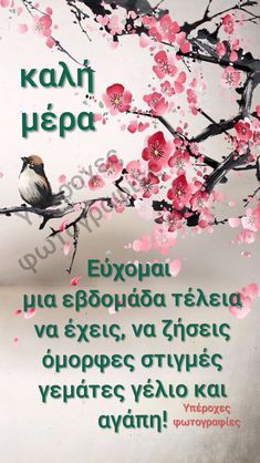 Good Afternoon, Good Morning, Greek Quotes, Texts, Beautiful, Mornings, Gifs, Education, Logo