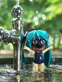 splashtime