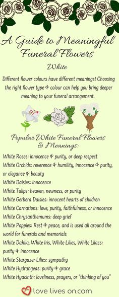 Most up-to-date Snap Shots Funeral Flowers meaning Style Regardless of whether you are planning or perhaps attending, memorials are invariably a new sorrowful and from. Remembrance Flowers, Memorial Flowers, Funeral Bouquet, Funeral Flowers, Funeral Sprays, Funeral Urns, Grave Flowers, Diy Flowers, White Flowers
