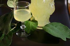 Italian Food and Style: Liquore al cedro World Recipes, White Wine, Italian Recipes, Glass Of Milk, Alcoholic Drinks, Food, Chef, Style, Alcohol