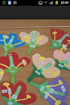 partes de la flor. Science Lessons, Science Activities, Interactive Word Wall, Flower Structure, 5th Grade Science, Parts Of A Flower, Fifth Grade, Life Cycles, Teaching