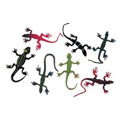 12 Colorful Rainforest Lizards at theBIGzoo.com