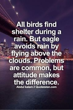 All birds find shelter during a rain. But eagle avoids rain by flying above the clouds. Problems are common, but #attitude makes the difference. #motivation #quote