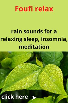 rain sounds for relaxation sleeping or studying . peaceful rain sounds.peaceful background music of nature . #Relaxing_rain_Sounds #Nature_Sounds #rain_sounds Relaxing Rain Sounds, Sound Of Rain, Nature Sounds, Insomnia, Studying, Plant Leaves, Meditation, Sleep, Peace