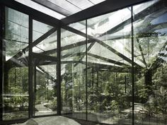 Steel trees with sprawling branches support the glass roof of this greenhouse in Switzerland by Buehrer Wuest Architekten.