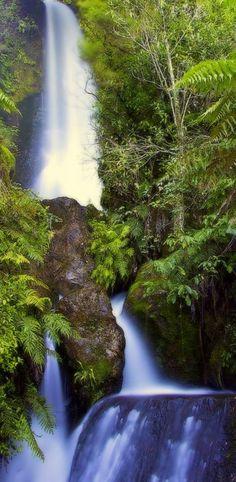 Te Wairere Falls - Rotorua, NZ