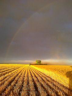 """""""Harvest Rainbow"""" Garden City, Kansas"""