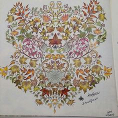 . Adult Coloring, Coloring Books, Garden Spider, Johanna Basford Secret Garden, Secret Garden Colouring, Colorful Drawings, Prismacolor, Color Inspiration, Vintage World Maps