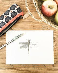 Dragonfly by OCÉCHOU