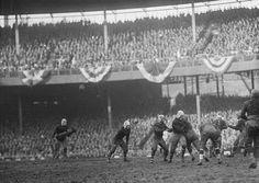 The NY Giants