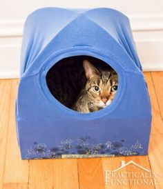 T-Shirt Cat Tent Is Super Easy – Watch The Video