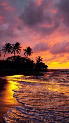 Beach and orange sky - Beach Sunset Wallpaper, Ocean Wallpaper, Nature Wallpaper, Wallpaper Backgrounds, Phone Wallpapers, Hawaiian Sunset, Palm Tree Sunset, Sunset Beach, Sunset Landscape