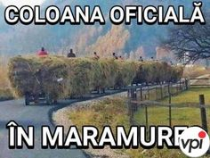 detalii... Romania, Haha, Jokes, Humor, Comics, Funny, Photography, Engine, Popular