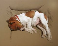(26) Pastel Society of America. Christine Obers. I saw this painting in person, and this photograph does not do it justice. It does not capture the softness and feathery ness of the pastel strokes that so perfectly captured the softness of the puppy's fur.