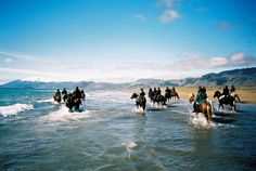 Image from http://nordictravel.com.au/image/type/galleryFullImage/id/4615/filename/Icelandic+horses+@IcelandTravel.jpg.