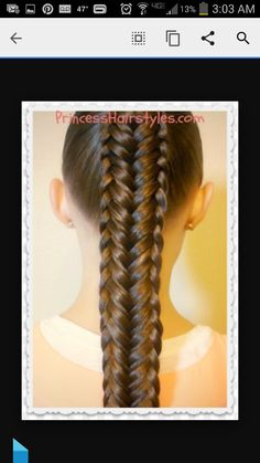 Beautiful braided hair, VERY COMPLEX!!!!