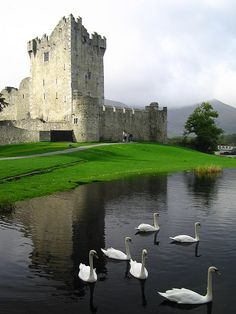 Ross Castle, County Kerry, Ireland  ♥ ♥   www.paintingyouwithwords.com