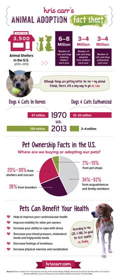 Animal Adoption Fact Sheet