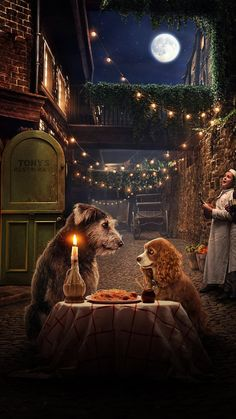 Lady and the Tramp Phone Wallpaper Disney Phone Wallpaper, Wallpaper Iphone Cute, Iphone Wallpaper, Movie Wallpapers, Cute Wallpapers, Disney Screensaver, Image Princesse Disney, Images Disney, Movies