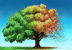 Seasons by Wafflesl.deviantart.com