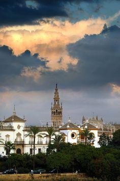 Apartment Seville Flor Naranja : Sevilla Monumental La Giralda Y la Maestranza