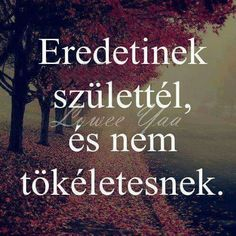 Akkor őrizzük itt is csöppet a magyarságunkat ; Jokes Quotes, Life Quotes, Motivational Quotes, Inspirational Quotes, Say That Again, Sad Life, English Quotes, Faith In God, Daily Motivation