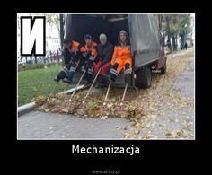 skiny.pl - demotywatory, śmieszne obrazki z internetu