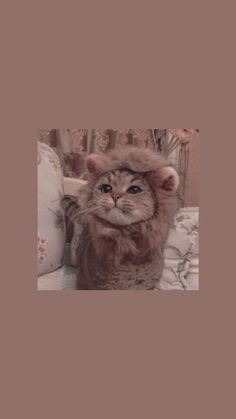 Cat Painting Portrait - Cat Ideas For Outside - Cat Sitting Quotes - Cat Logo Modern Tier Wallpaper, Cute Cat Wallpaper, Emoji Wallpaper, Cute Wallpaper Backgrounds, Animal Wallpaper, Disney Wallpaper, Wallpaper Desktop, Wallpaper Patterns, Geometric Wallpaper
