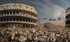 Rauzier Animals 7