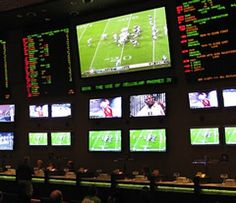 All sports fans boast vast amount of knowledge, but only few use it to make money. Sport betting is the gateway to financial freedom. Sports Betting, Number One, How To Make Money, Freedom, Knowledge, Fans, Liberty, Political Freedom, Consciousness