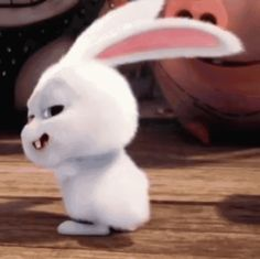 The perfect Bunny Snowball TheSecretLifeOfPets Animated GIF for your conversation. Discover and Share the best GIFs on Tenor. Cute Bunny Cartoon, Cartoon Pics, Cute Cartoon Wallpapers, Funny Videos, Bonjour Gif, Snowball Rabbit, Gif Bonito, Gif Lindos, Funny Animals