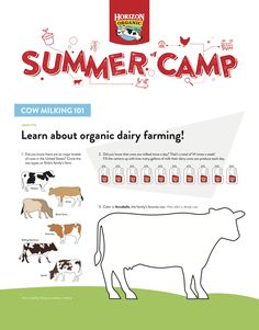 Did You Know, Knowing You, Cow, Milk, Learning, Summer, Teaching, Education, Studying