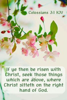 If ye then be risen with Christ, seek those things which are above, where Christ sitteth on the right hand of God. Colossians KJV