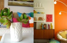 colors and plants could add different look for your home