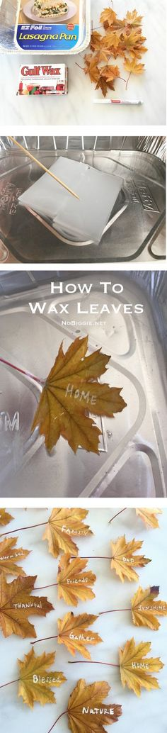 How to wax real leav
