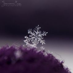 Small frozen world by =FrArt-xD on deviantART
