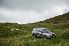Subaru Forester | AWD Family SUV - Subaru
