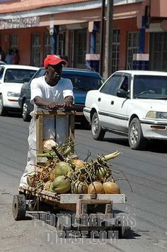 Jamaican push cart.  This is what the Jamaican bob sled team first started practicing with.
