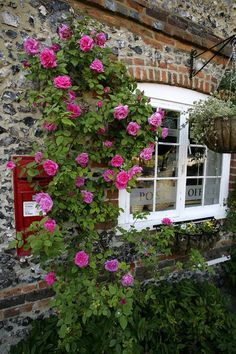 Mail and Roses...Lovely combination!