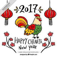 Chinese new year 2017, hand drawn rooster Premium Vector
