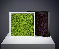 Ideas white wood walls paneling vertical for 2019 White Wood Wall Panels, Wood Panel Walls, Wood Box Decor, Moss Graffiti, Moss Decor, Interior Design Plants, Lighted Wall Mirror, Wall Sconces, Wood Bed Design